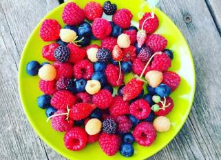 Raspberry season