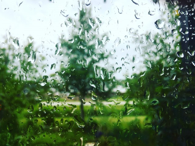 Summer in Minnesota, rain